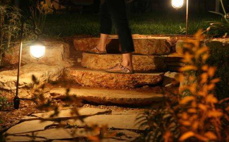 הגינה בלילה